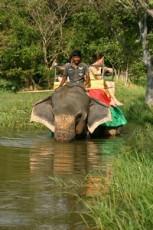 Balade_elephant