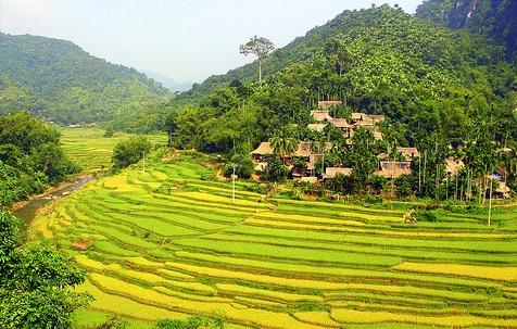 Trek dans la réserve naturelle Pu Luong 6 jours